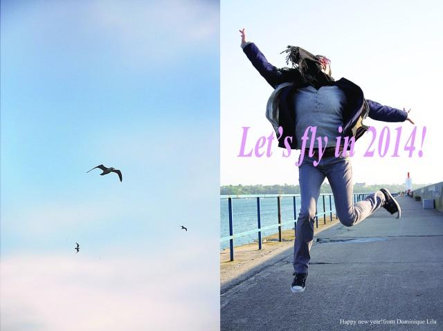 2014 fly wish